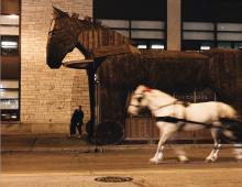 Field Museum Trojan Horse